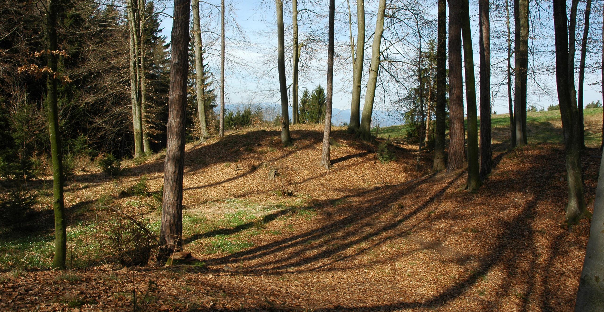 Foto der Hügelgräber am Wanderweg in Goldes.